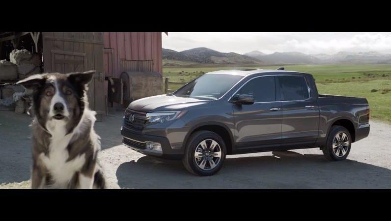 Honda Ridgeline – Reclama SuperBowl în care toate animalele vorbesc