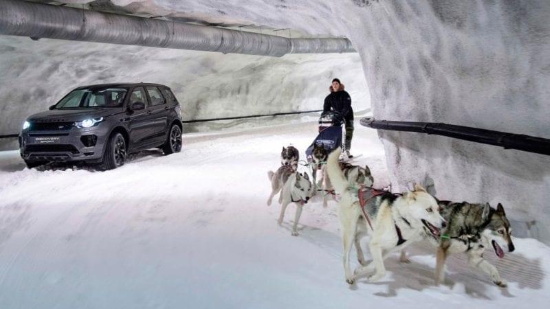Land Rover Discovery Sport își măsoară forțele cu o sanie trasă de câini